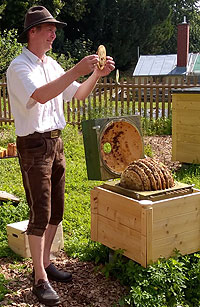 Picture: Beekeeper Andreas Heidinger in the Dachau bee garden